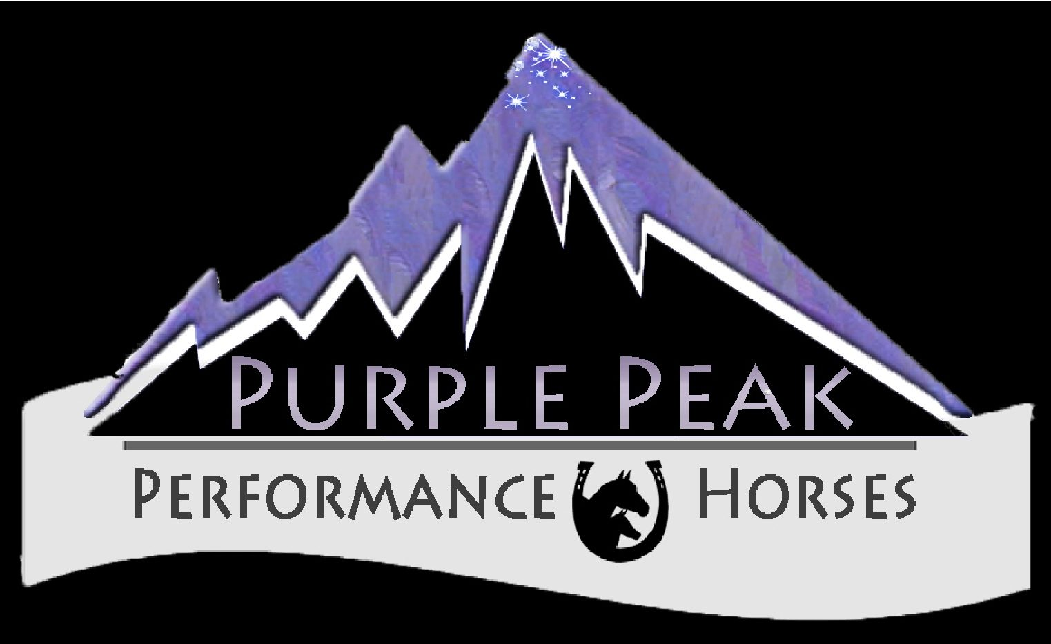 Purple Peak Performance Horses