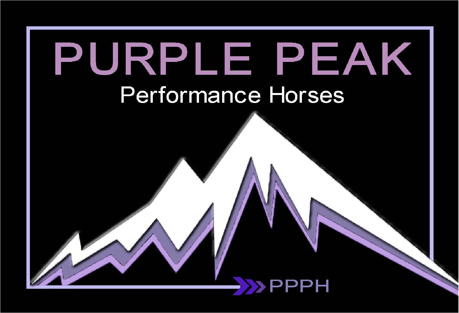 Purple Peak Performance Horses